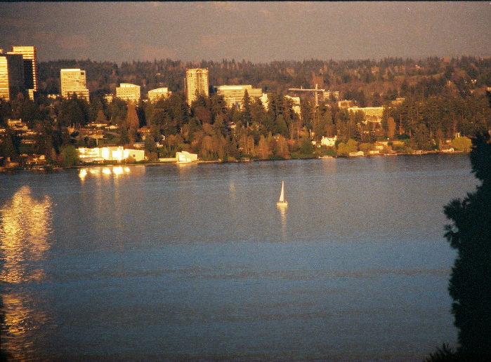 sailboatlakewashington.jpg